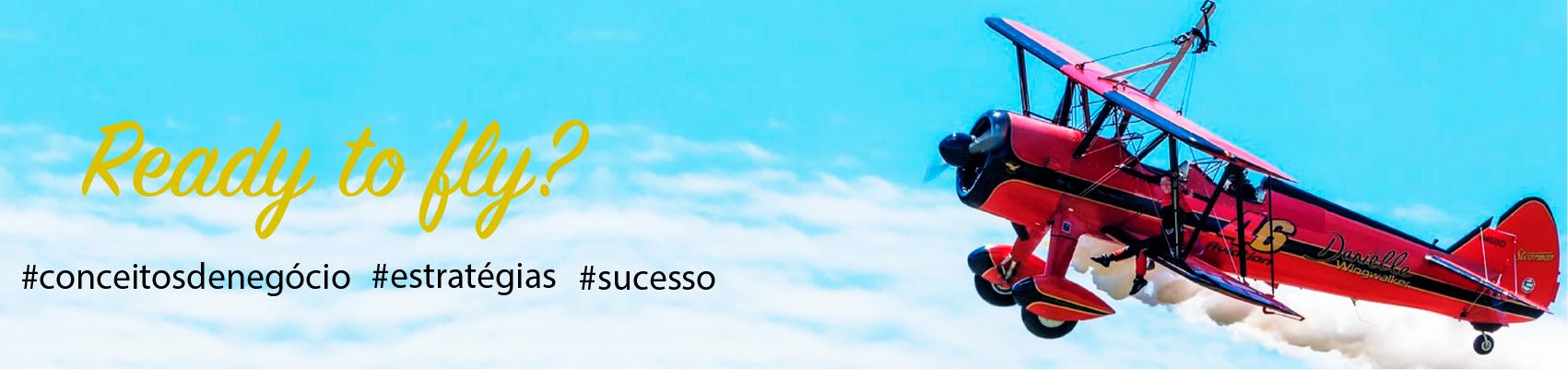 Conceitos de negócio, estratégias, sucesso